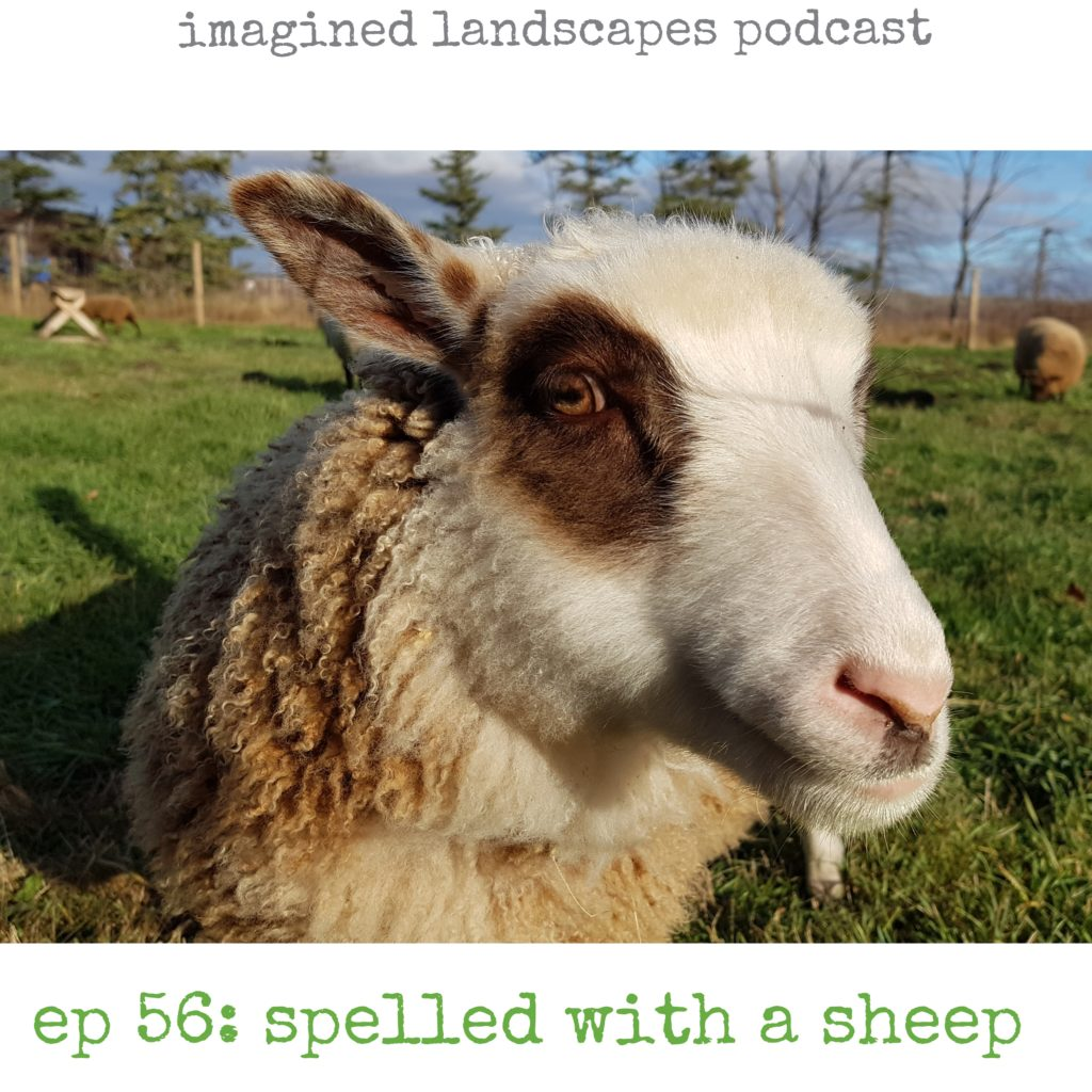 Spelled With a Sheep: Episode 56 of the Imagined Landscapes Podcast for knitters